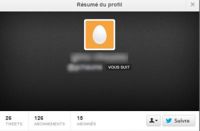 twitter profil sans bio